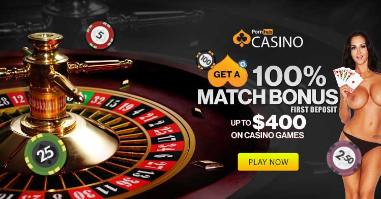 PlayHub Casino - Live Dealer Roulette